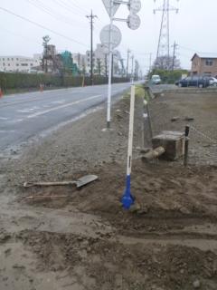 雨の中、穴掘りスコップがデビューです。