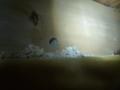 ツーバイだから、梁下ボード張り、穴開けます。