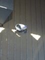 倉庫の防犯カメラです。