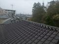 屋根はすっきり。