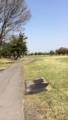 今日は久々の上里ゴルフ場です。