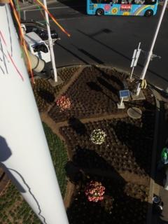 鴻巣駅前でイルミネーション取付作業中です。