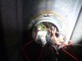 多分、漏電はブレーカからこの一発目ジョイントボックス代わりの水銀