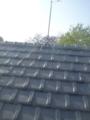 屋根馬尻もち。