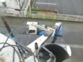雨の中屋根に上ります。