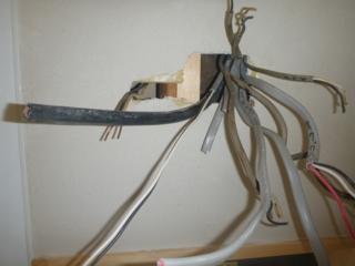 塗り壁から出てきてた電灯幹線と、回路配線VVFです。