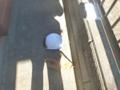 黄色の低圧手袋と全面目を保護シールドヘルメットです。