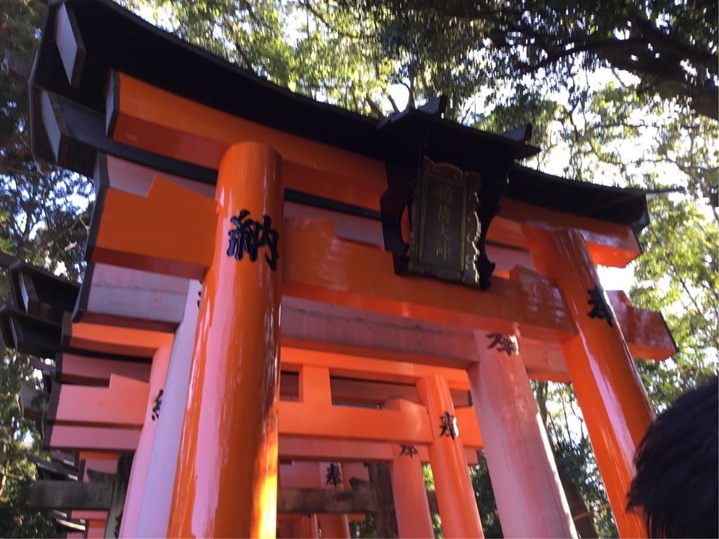 f:id:utukusiihibi43:20190104185419j:plain
