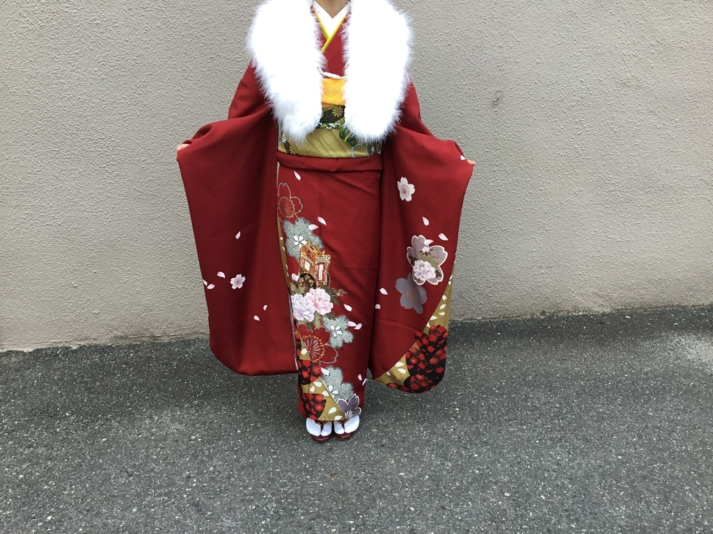 f:id:utukusiihibi43:20190115072220j:plain