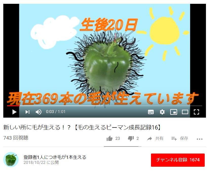 f:id:utyuu_no_housoku:20190409165033j:plain