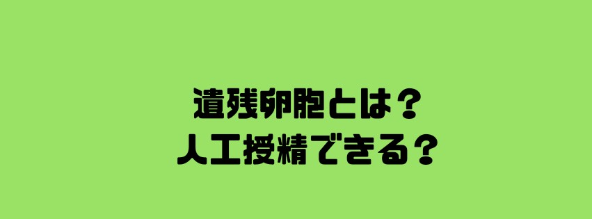 f:id:uuuta1122:20181127115530j:plain