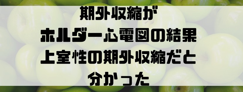 f:id:uuuta1122:20190202153157j:plain