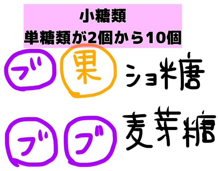 f:id:uuuta1122:20191002095222j:plain