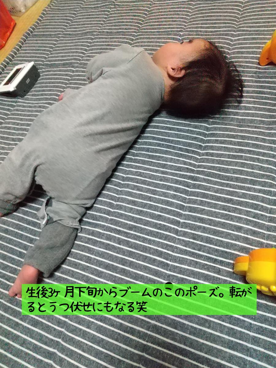 f:id:uuuta1122:20201121180237p:plain