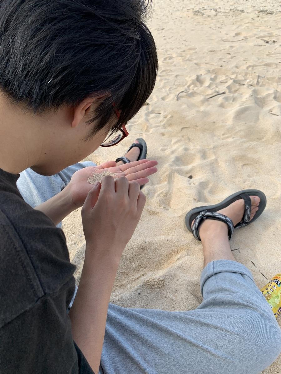 f:id:uwabami_jp:20191116210237j:plain