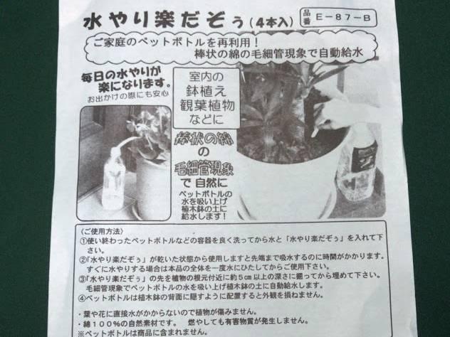 f:id:uwano-sora:20190519200912j:plain