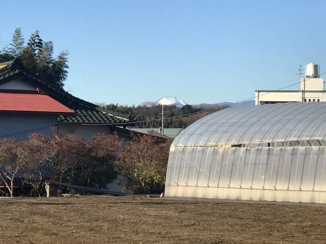 住宅の間からの富士山