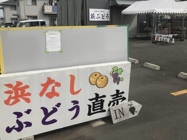 渡辺さんの直売場
