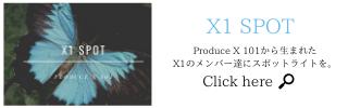 X1 スポット