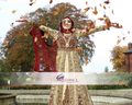 A British Asian Bride on her wedding day