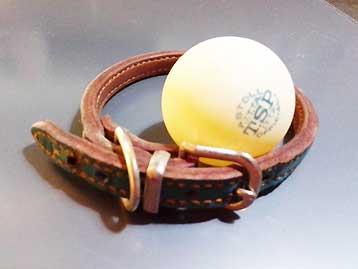 子犬用の首輪
