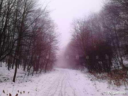 ベルリンの雪
