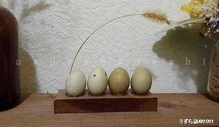 ヒメウズラの卵オブジェ