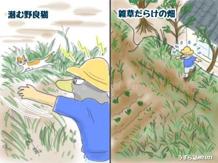 f:id:uzurabanashi:20210711133712j:plain