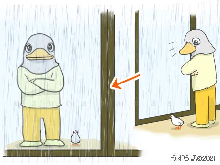 人間と一緒に外の天気を見るヒメウズラ