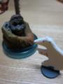 『海洋堂』の旭山動物園シリーズ