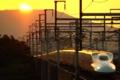 『京都新聞写真コンテスト 夕陽を背に』