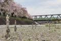『京都新聞写真コンテスト 不思議な石柱』