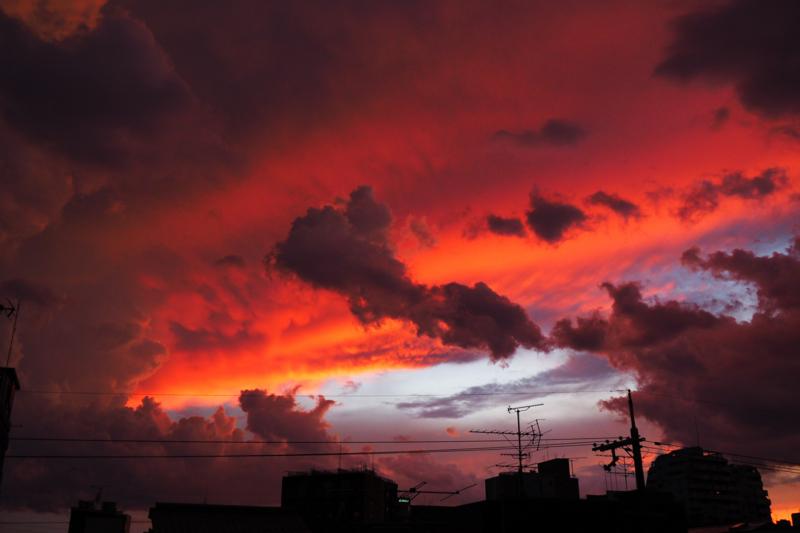 『京都新聞写真コンテスト 何でもない日の素敵な夕暮れ』