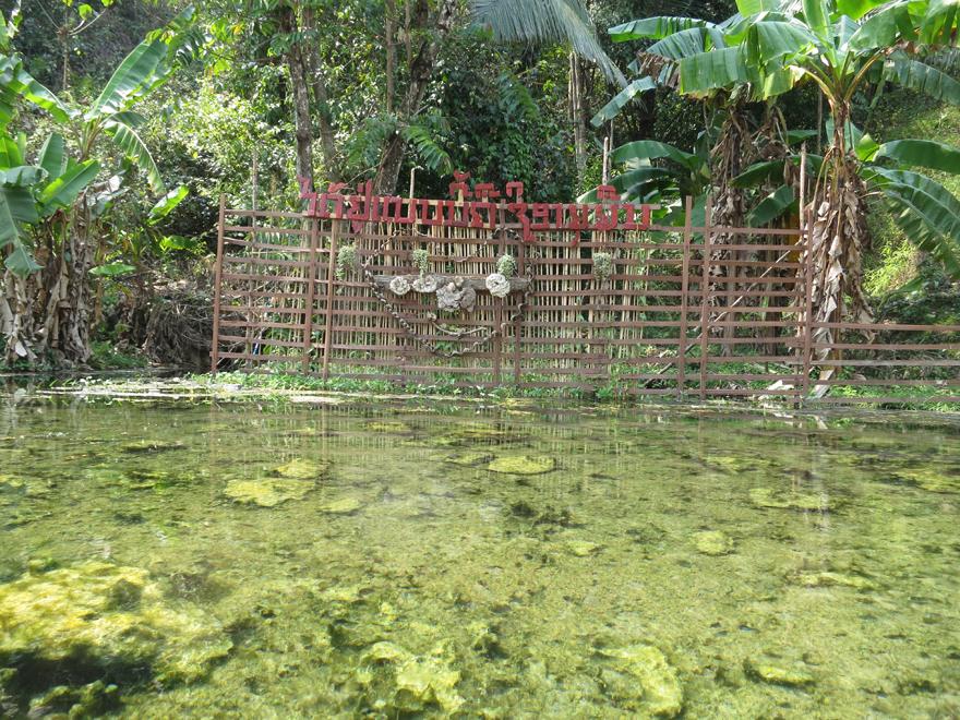 ラオスの温泉、カシ・スプリング(Kasi Spring)の様子