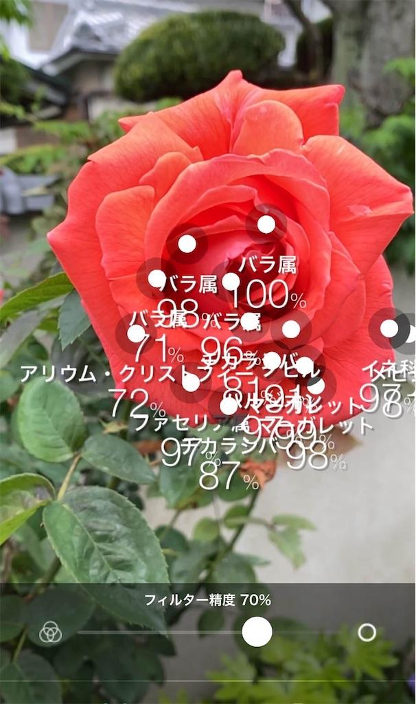 f:id:vcken:20200510155821j:image
