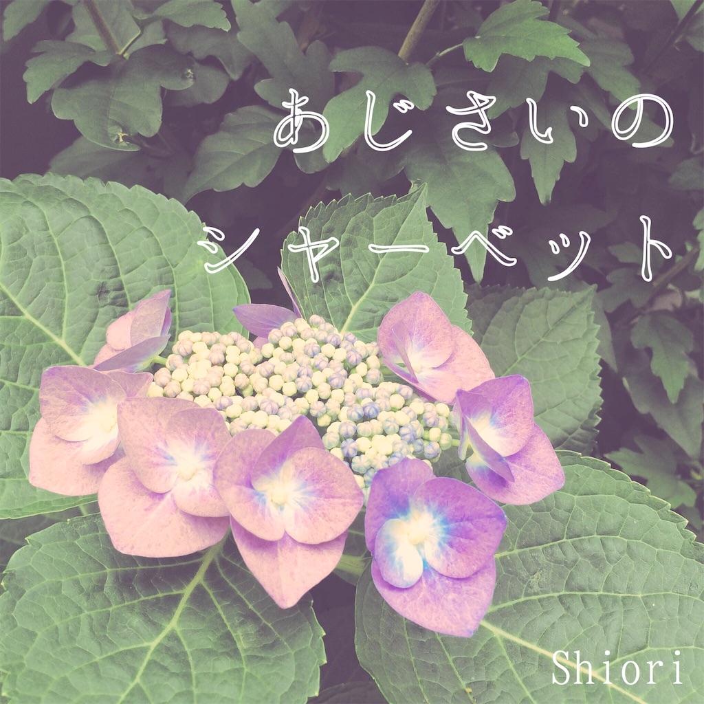 f:id:vcshiori:20161020141315j:image