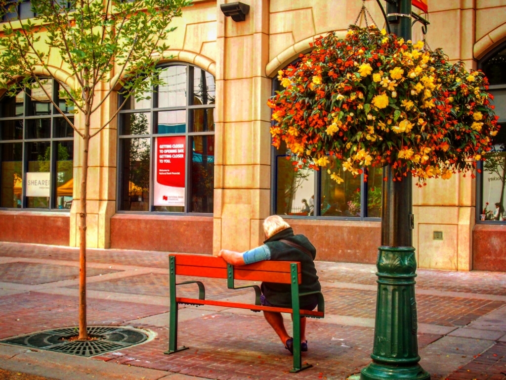 カナダ カルガリーのベンチに座るおじいちゃん