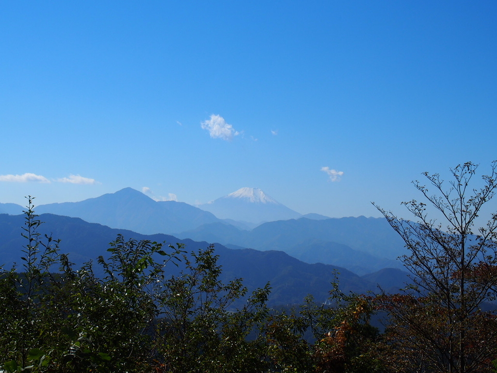 東京都高尾山の頂上からの景色