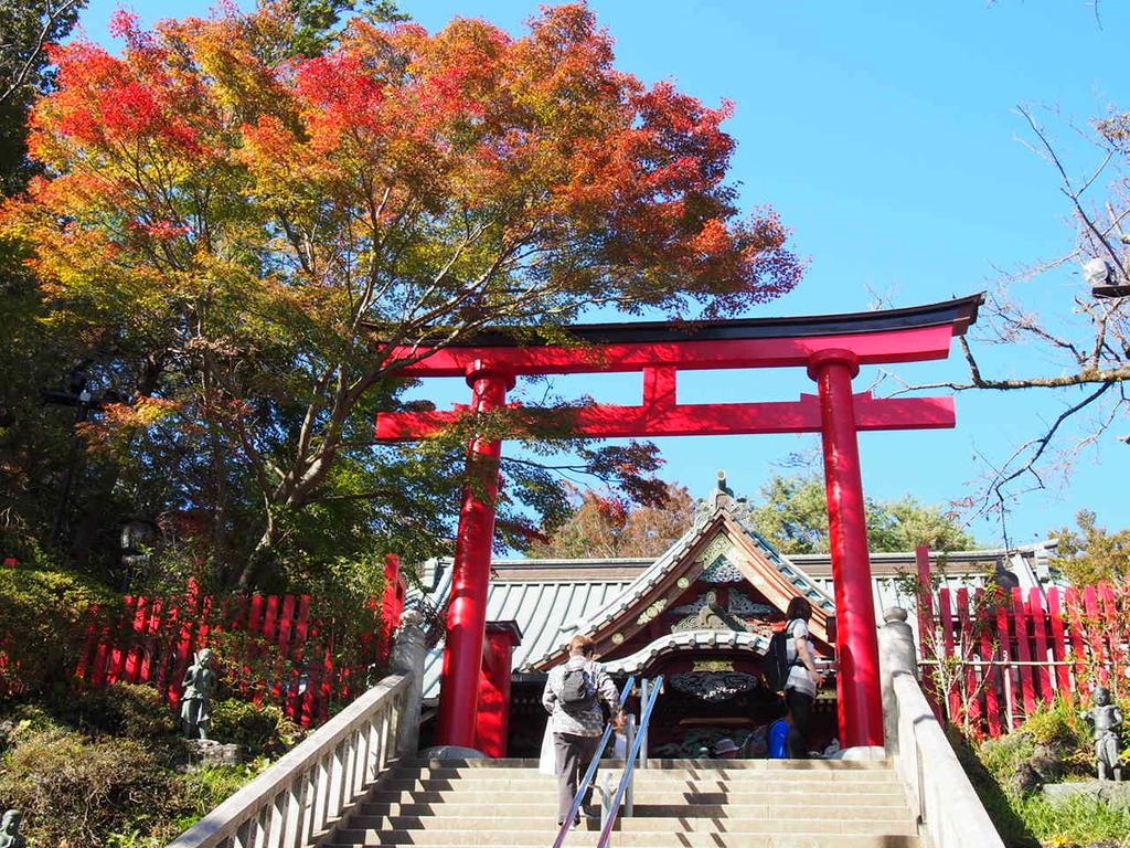 東京都高尾山の鳥居と紅葉