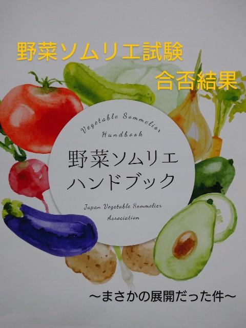 f:id:vegetablist:20200314201839j:image