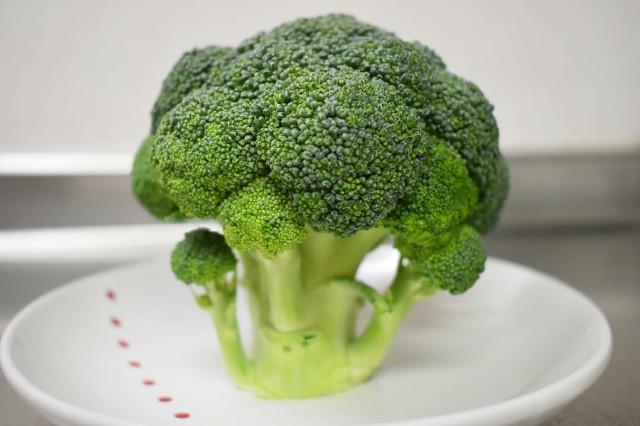 f:id:vegetablist:20200407162815j:image