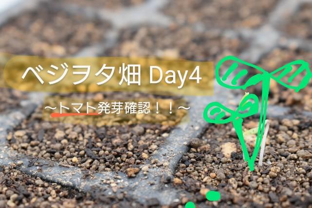 f:id:vegetablist:20200414133611j:image