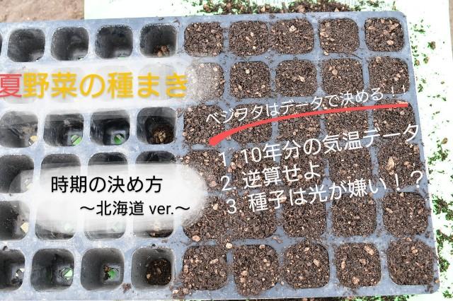 f:id:vegetablist:20200414181641j:image