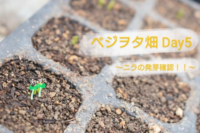 f:id:vegetablist:20200415154551j:image