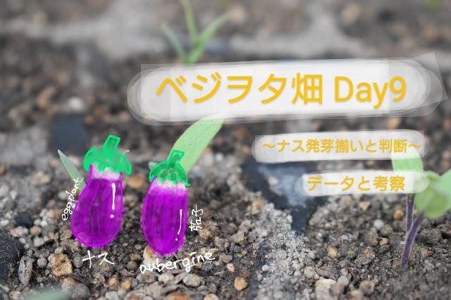 f:id:vegetablist:20200420204513j:image