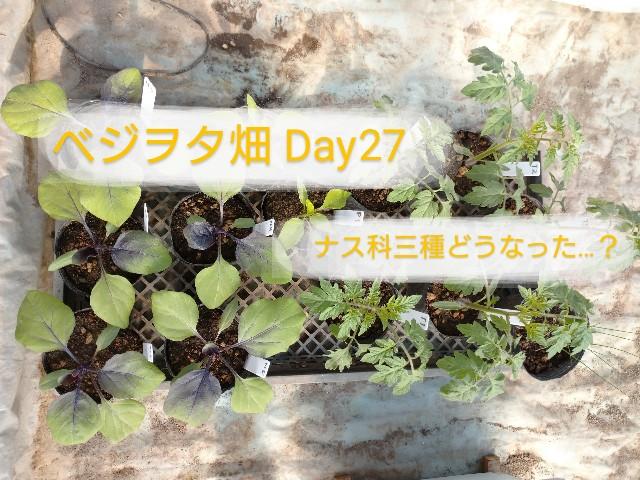 f:id:vegetablist:20200507205102j:image