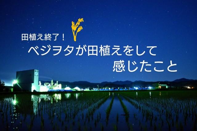 f:id:vegetablist:20200531211647j:image