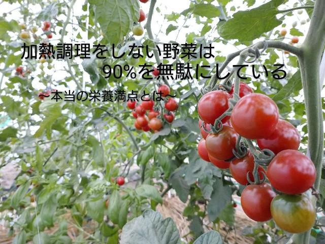 f:id:vegetablist:20200829180825j:image