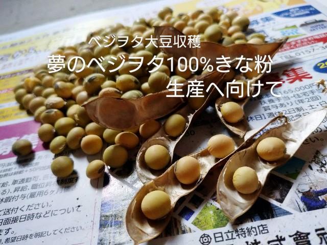 f:id:vegetablist:20201018173158j:image
