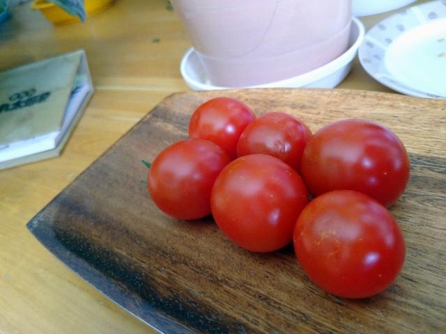 f:id:vegetablist:20201025171952j:image
